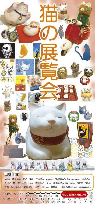 cat2009.jpg