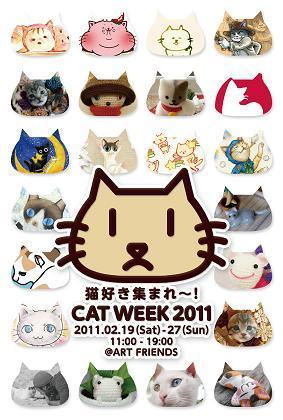 CAT WEEK 2011 DM