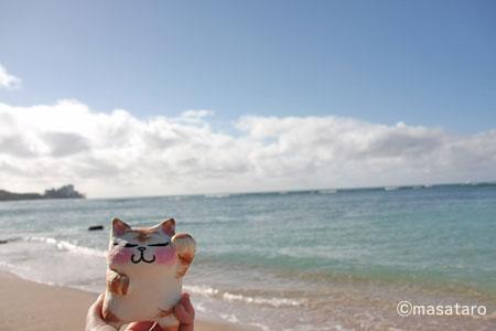 2009年のハワイ旅行より