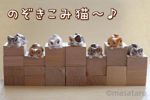 のぞきこみ猫たち追加納品しました☆