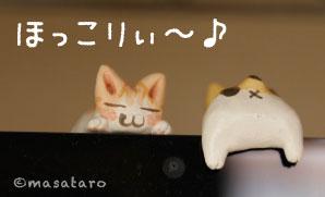 パソコンモニターの上でまったり♪猫