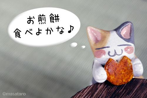 お煎餅を食べる猫