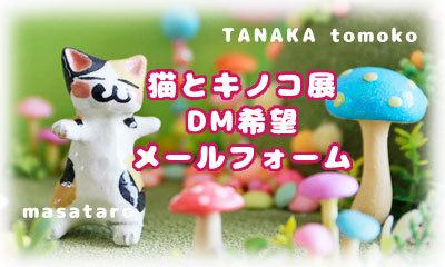 猫とキノコ展DM希望メールフォーム