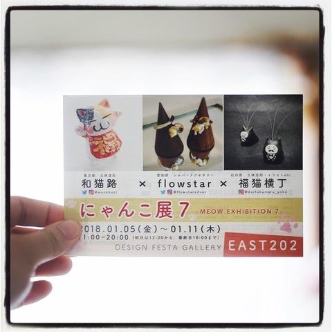 にゃんこ展7DM